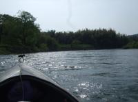 090502_canoe19